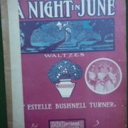 A_NIGHT_IN_JUNE
