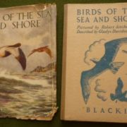 BIRDS_OF_THE_SEA_AND_SHORE